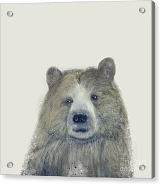 Acrylic Print featuring the painting The Kodiak Bear by Bri B