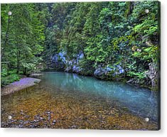 The Kupa River Acrylic Print by Don Wolf