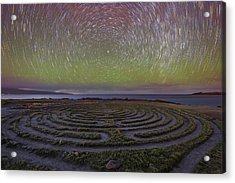 The Labyrinth And The Universe Acrylic Print by Todd Kawasaki