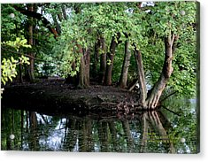 Acrylic Print featuring the photograph The Lake by Paul SEQUENCE Ferguson             sequence dot net