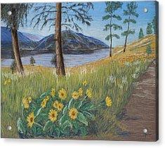 The Lake Trail Acrylic Print by Marina Garrison