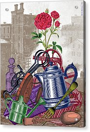 The Land Of Lost Ladders Acrylic Print by Eric Edelman