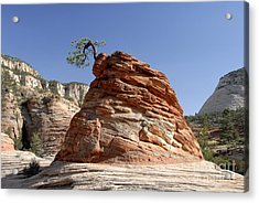 The Land Of Zion Acrylic Print by David Lee Thompson