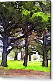 The Landscape With The Leaning Trees Acrylic Print