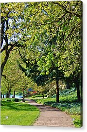 The Lane At Waverly Pond Acrylic Print by VLee Watson