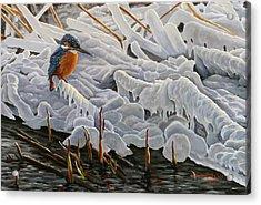 The Last Burst Of Winter Acrylic Print