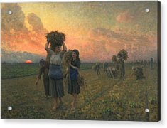 The Last Gleanings Acrylic Print