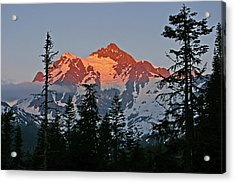 The Last Light Acrylic Print