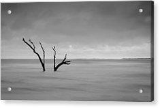 I'm Not Alone - Folly Beach Sc Acrylic Print