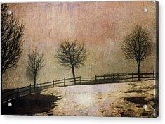 The Last Snow Acrylic Print