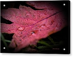 The Last Tear Of Summer Acrylic Print by Mick Anderson