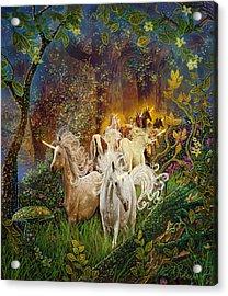 The Last Unicorns Acrylic Print by Steve Roberts