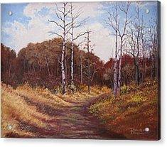 The Last Wilderness Acrylic Print