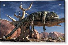 The Lazy Lizard Acrylic Print by Daniel Eskridge