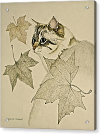 the Leaf Cat Acrylic Print