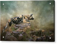 The Leap Acrylic Print