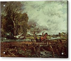 The Leaping Horse Acrylic Print by John Constable