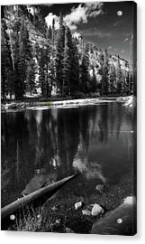 The Lengths That I Would Go To Acrylic Print by Laurie Search