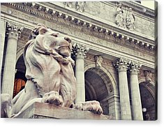 The Library Lions Acrylic Print by JAMART Photography