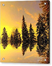 Acrylic Print featuring the photograph The Light by Elfriede Fulda