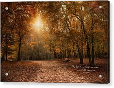 Acrylic Print featuring the photograph The Light by Robin-Lee Vieira