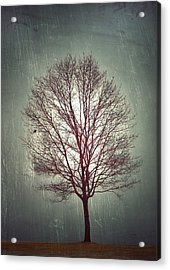 The Light Within Acrylic Print