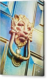 The Lion Is Guarding  Acrylic Print by Tom Gowanlock