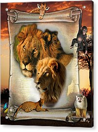 The Lion King From Africa Acrylic Print by Nadine May