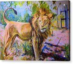 The Lion Acrylic Print