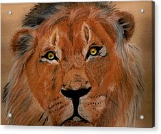 The Lion Within Acrylic Print by ShadowWalker RavenEyes Dibler