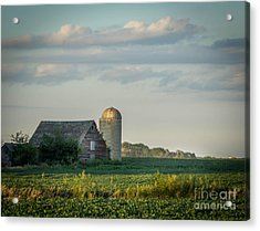The Little Barn Acrylic Print by Lisa Phillips