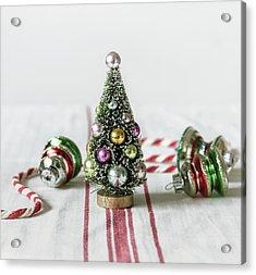 Acrylic Print featuring the photograph The Little Christmas Tree by Kim Hojnacki