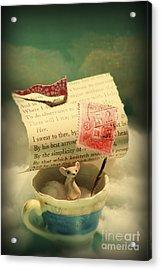 The Little Dreamer Acrylic Print by Aimee Stewart