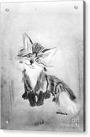 The Little Fox - Black And White Acrylic Print