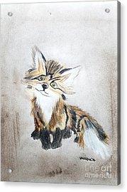 The Little Fox - Original Pastels Acrylic Print