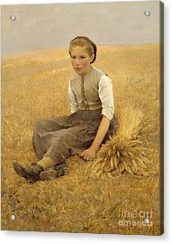 The Little Gleaner, 1884 Acrylic Print