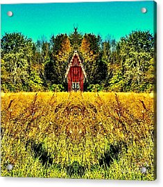 The Little House In The Field Acrylic Print
