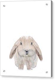 The Littlest Bunny Acrylic Print