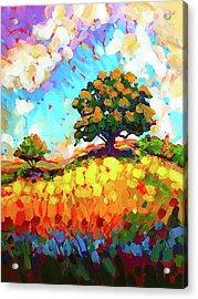The Live Oak On The Hill Acrylic Print
