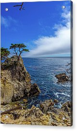 The Lone Cypress 17 Mile Drive Acrylic Print