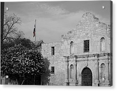 Acrylic Print featuring the photograph The Lone Star by Dylan Punke