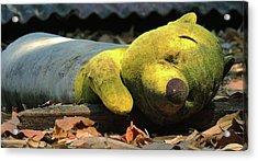 The Lonely Teddy Bear Acrylic Print