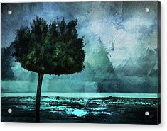 The Lonely Tree Acrylic Print by Declan O'Doherty