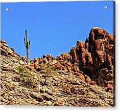 The Lonesome Saguaro Acrylic Print by Robert Bales