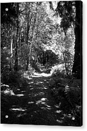 The Long And Winding Road  Bw Acrylic Print by Ken Day