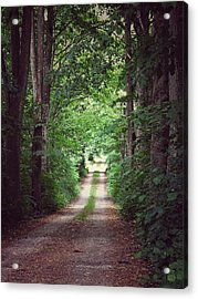 The Long Driveway Acrylic Print by Karen Stahlros