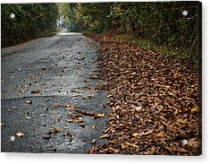The Long Road Home Acrylic Print