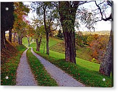 The Long Road In Autumn Acrylic Print by Mike Murdock