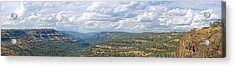 The Long View Acrylic Print by Charlie Osborn