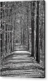 The Long Walk Acrylic Print